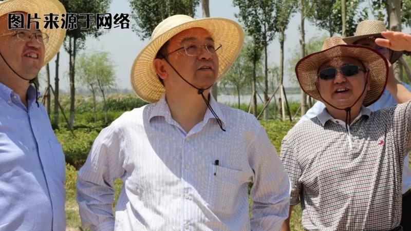 汽车故事会:王传福(四)