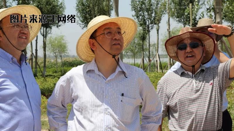 汽车故事会:王传福(二)