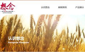 想念食品IPO:产品单一毛利率低、经销商疑点多、扩充产能不合理
