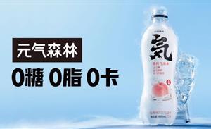 """创始人唐彬森称中国缺好产品,""""伪日系""""元气森林的壁垒够高吗?"""